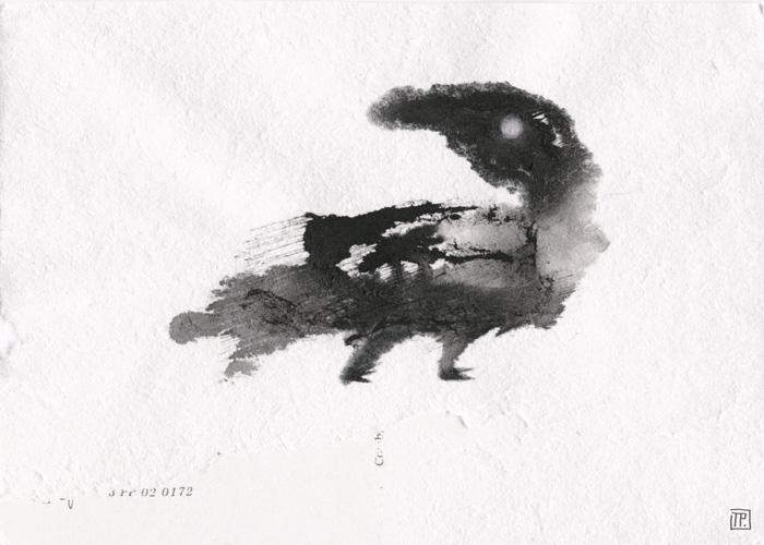 oiseau-02